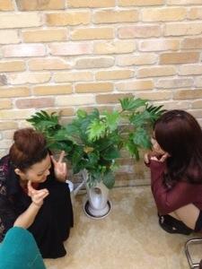 久居店 植物