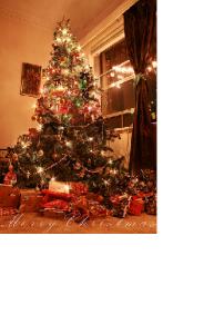 クリスマスツリーやイルミネーションの飾りつけをしました。